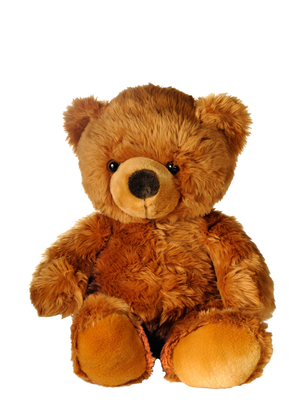 Send a teddy bear to Ukraine