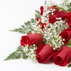 11 red roses with baby's breath
