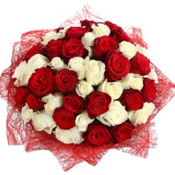 composition of red and white roses